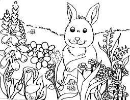 spring color pages print coloring pictures flower preschool sheet 1 sheets for s free pi spring colouring pages