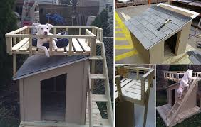 double dog house plans. DIY Dog House With Roof Top Deck Home Design Garden Double Plans P