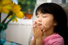 Image result for picture little child praying