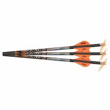 Ravin Lighted Arrows