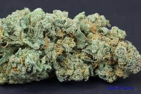 Los Angeles Medical Marijuana Reviews J 1