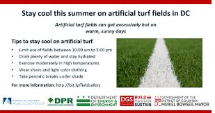 Interagency Working Group On Artificial Turf And Playgrounds