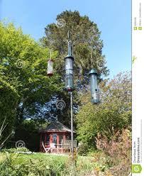 squirrel proof bird feeders hanging in a garden