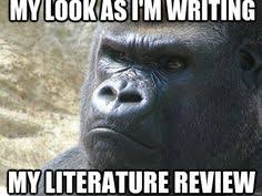 argument essay persuasive writing devices