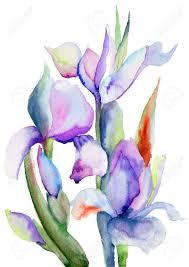 artist iris watercolor