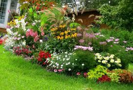 small gardens landscaping ideas. Cbd In Gardening Ideas Small Gardens Landscaping E