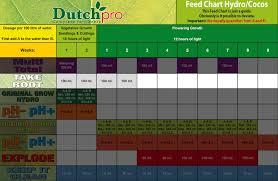 Dutchpro Take Root