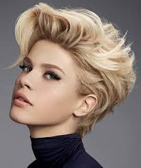 Hairstyle For Women With Short Hair best 25 short punk hairstyles ideas short punk 7216 by stevesalt.us