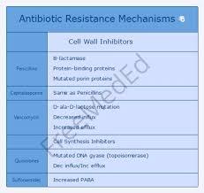 Antibiotic Resistance Mechanism Of Action Chart Penicillins