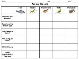 Classes Of Animals Informational Chart