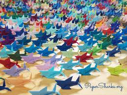 paper sharks make a wish for shark conservation paper sharks raising awareness for shark conservation