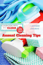 Household Maintenance List How To Clean Your House 4 Cleaning Schedules To Print