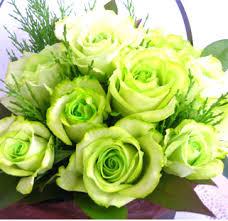 「グリーンの薔薇」の画像検索結果