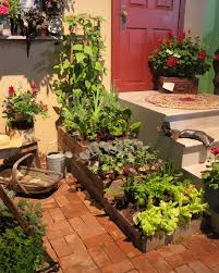 container gardening vegetables. Container Gardening Of Vegetables E