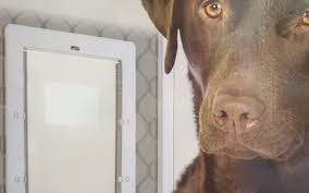 large dog door for screens supplied installed