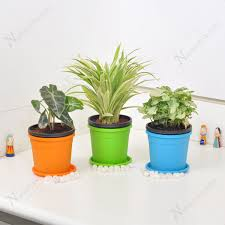 office indoor plants. Cubicle-Friendly Table Top / Office Desk Indoor Plants |