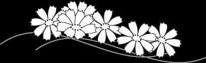 コスモス 秋のイラスト無料イラストフリー素材
