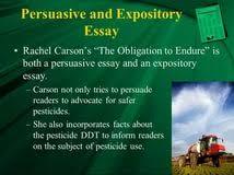 carson essay food service industry essay grant writing carson essay