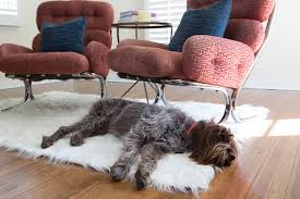 wash and wear if you re a er for white furry rugs as i am but don t like how quickly they show dirt consider this washable rug from ruggable