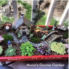 my fairy garden gnome garden