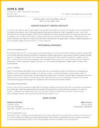 Government Resume Template Inspiration Federal Government Resume Examples Federal Government Resume Example