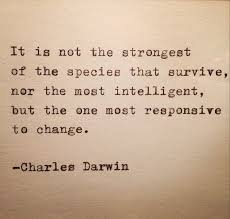 Survival Quotes Fascinating Survival Quotes Alluring 48 Best Survival Quotes Images On Pinterest
