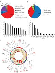 Dna Sequencing A B Pie Chart Represents The Distribution