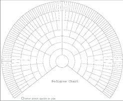 Ancestry Diagram Blank Genealogy Chart Template Family Tree Fan Chart Template Blank