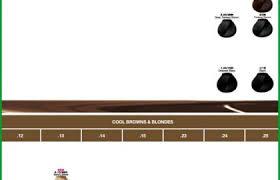 Diacolor Chart Conclusive Loreal Diacolor Chart 2019