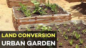 urban gardening in the philippines and land conversion earn money from your garden