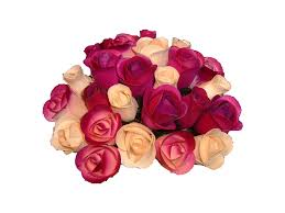 Color Chart Wooden Roses Wholesale Wooden Roses Wood Flowers