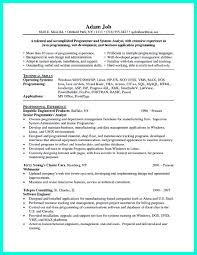 computer programmer resume samples computer programmer resume has some paragraphs that focuses on the