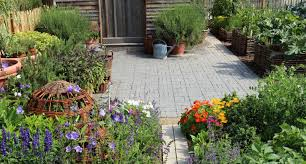 Small Picture Low maintenance gardens how to get the wow factor all year round