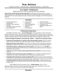 Commercial Finance Manager Sample Resume Resume Template Auto Finance And Insurancenager Outstanding Format 19
