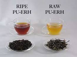 Image result for pu-erh tea