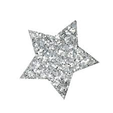 Image result for silver glitter