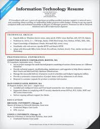 Director Of Information Technology Resume Sample Skills Section Best Tips On A Resume Examples Example Of Musmusme 60
