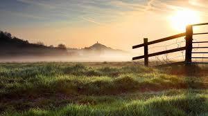 grass field sunrise. Modren Sunrise Grassy Field At Sunrise Wallpaper On Grass N