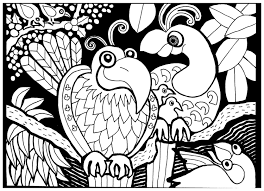 Small Picture Africa Coloring pages for adults coloring adult africa birds
