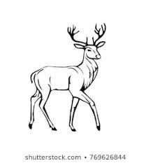 Deer Drawing Images Stock Photos Vectors Shutterstock
