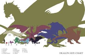 Dragon Size Chart Dragon Art Smaug Dragon Dragon