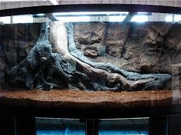 diy aquarium 3d foam background resume image backgrounds
