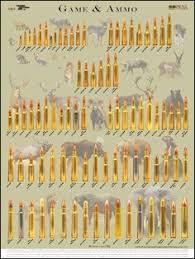 Rifle Caliber Chart 20 Disclosed Ammunition Caliber Chart