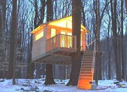 tree house plans for two trees.  Trees Treehouse Designs For Two Trees Image Gallery Of Tree House Plans  Well Suited Ideas Oh My Gosh I Would Love To Live In This Seriously