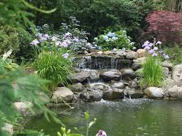 Small Picture ponds for small garden designs Garden Ponds Design DIY Project