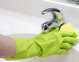Annandale Maid Services