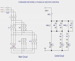single phase motor reversing wiring diagram dolgular com forward reverse single phase motor diagram at Ac Motor Reversing Switch Wiring Diagram