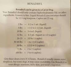 Benadryl For Dogs Dog Benadryl Benadryl For Dogs Dosage