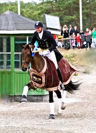 Custom Saddlery Teams Up with Swedish Olympian, Patrik Kittel   Horses Daily