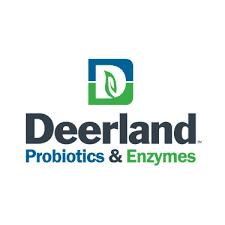 deerland probiotics enzymes